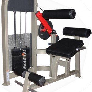 Abdominal, Back extension Machine Commercial