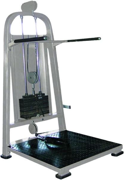 Leg Swing - Multihip