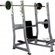 Olympic Military mShoulder Press Bench