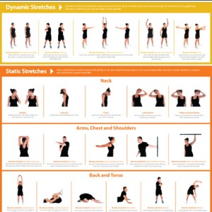 Poster  Upper Body Stretching