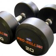 Pro-Bell RDL Dumbbells Gymwarehouse