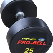 Pro-Bell USC PU Gym Dumbbell Gymwarehouse
