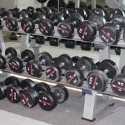 RDL Dumbbells Gymwarehouse