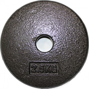Standard Weight Plates for Gym Use