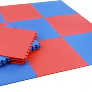 red and blue gym martial arts mat