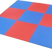 red and blue gym studio mats