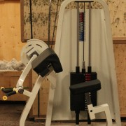 Used Biceps Curl Machine