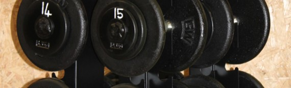 Custom Vertical Dumbbell Rack + Calibrated Dumbbells