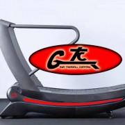 Treximo Green Treadmill